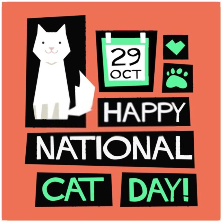National Cat Day Wishes 2020 For Cat Lovers