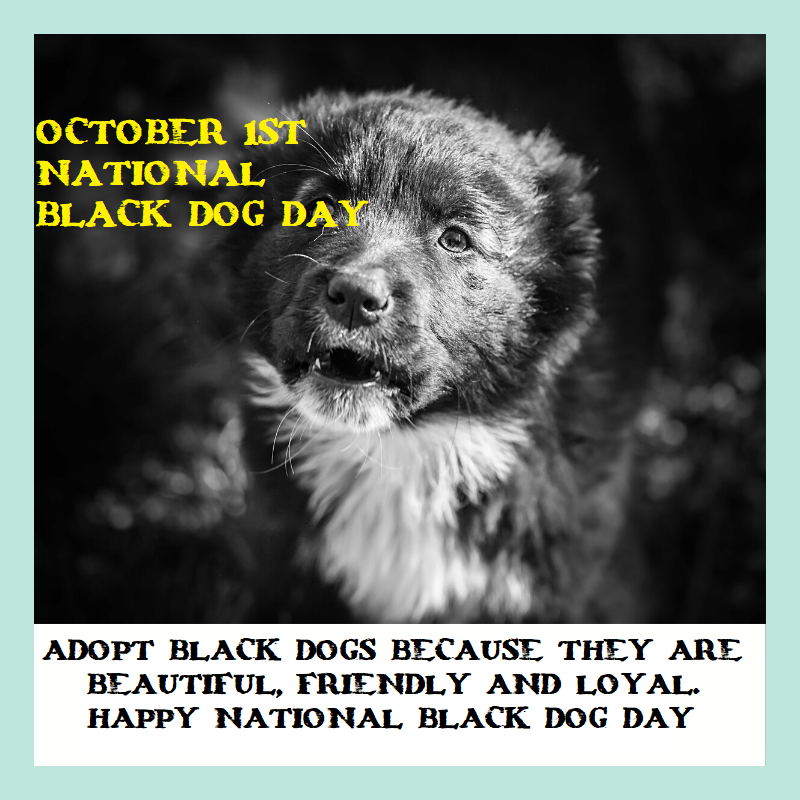 National Black Dog Day